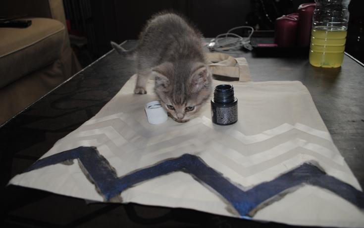 DIY Tote Bag - Peinture