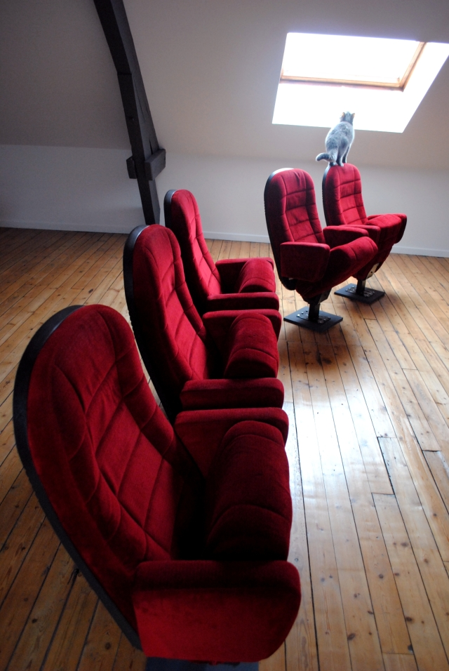 Fauteuils Cinema Occasion - 09