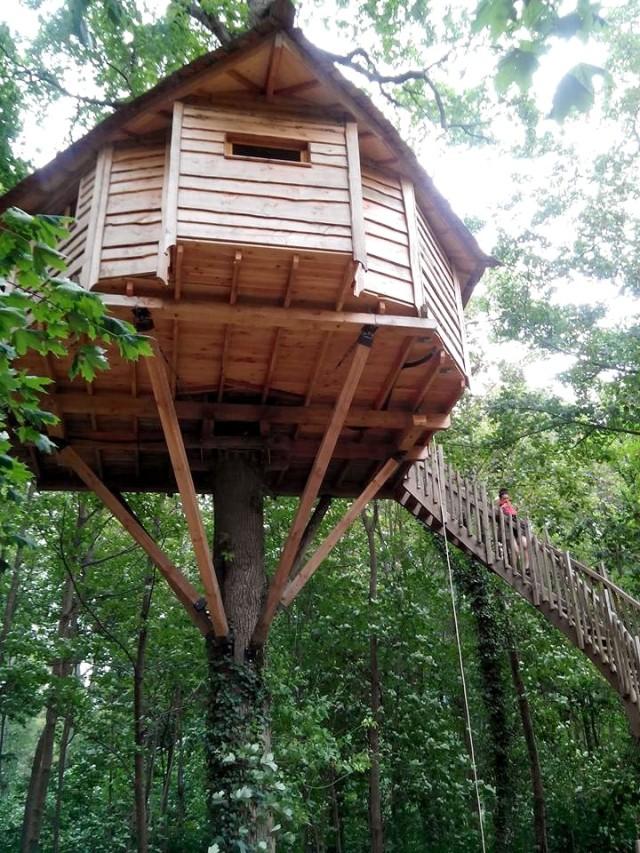Cabanes dans les arbres Raray 01