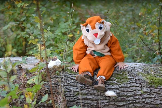 Deguisement ecureuil bebe halloween 02