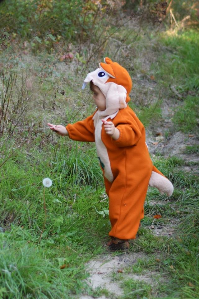 Deguisement ecureuil bebe halloween 03