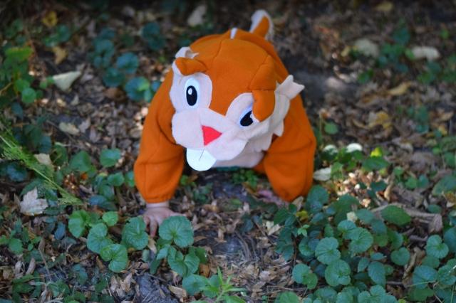 Deguisement ecureuil bebe halloween 05