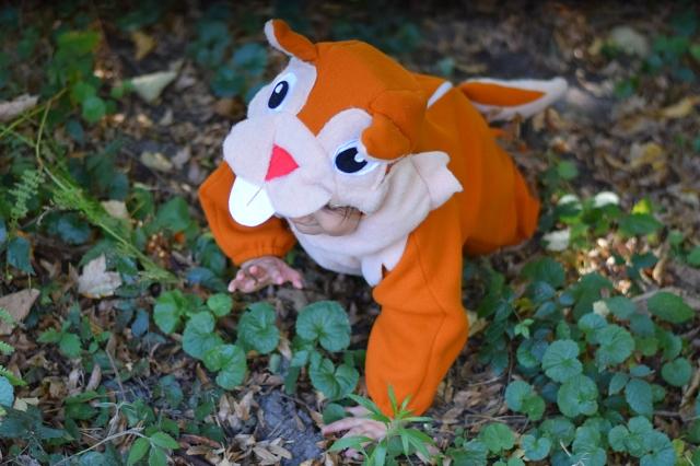 Deguisement ecureuil bebe halloween 06