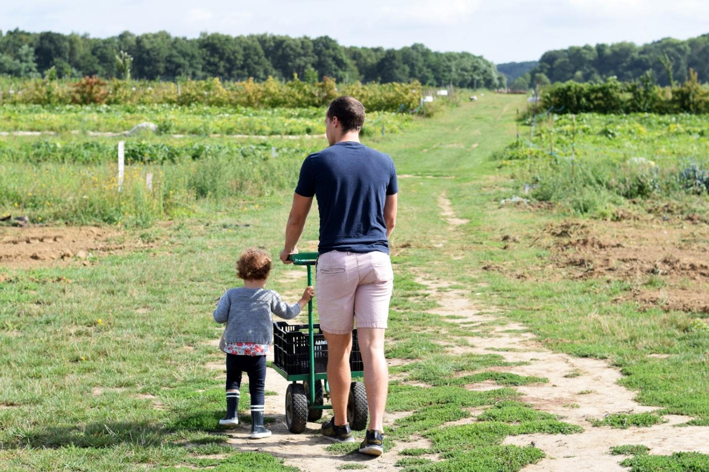 Cueillette fruits legumes enfant jardins montplaisir oise 06