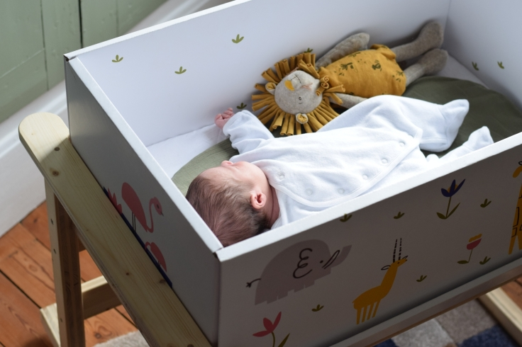Babybox Frenchpoupon Savane 01